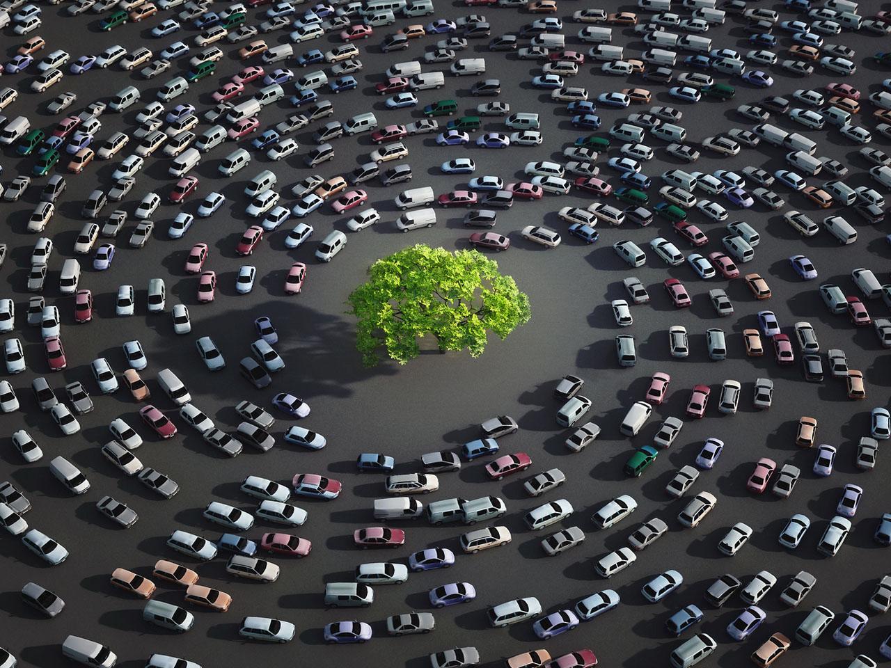 Des arbres pour une meilleure santé en ville