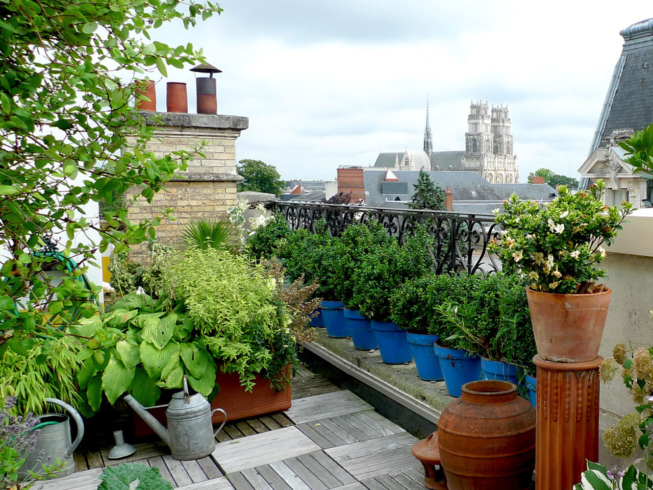 Des potagers sur les toits de Paris