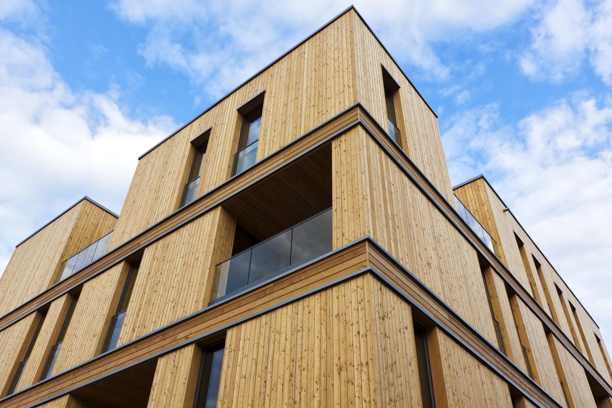 Essor de la construction en bois