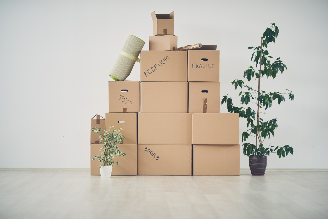 Logement : nos conseils pour déménager dans de bonnes conditions
