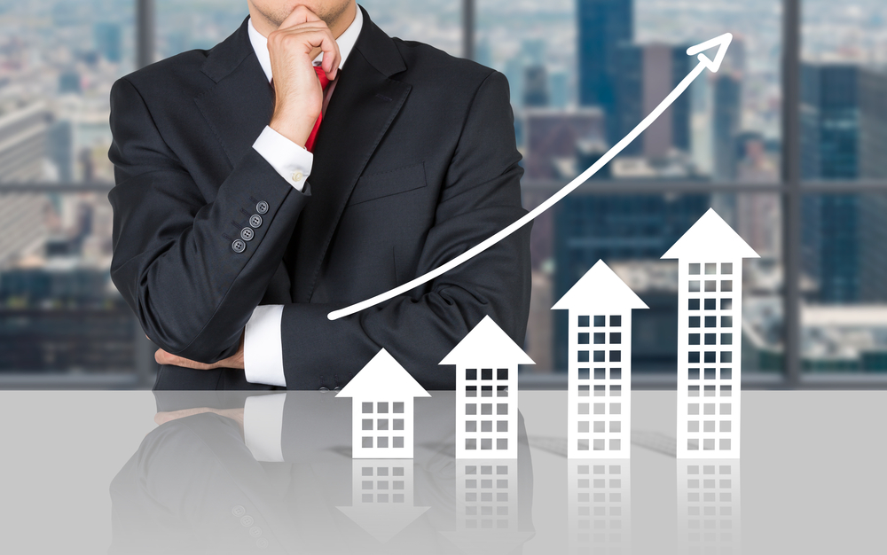 Type d'investisseur immobilier