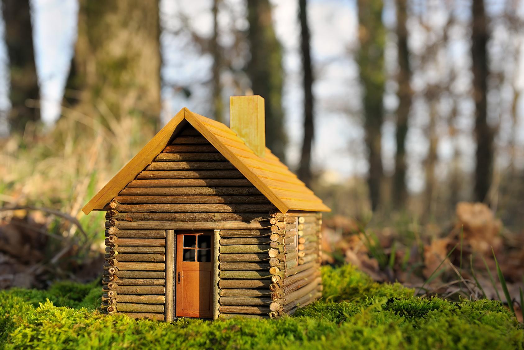 Des mini-maisons écologiques à 18 000 €