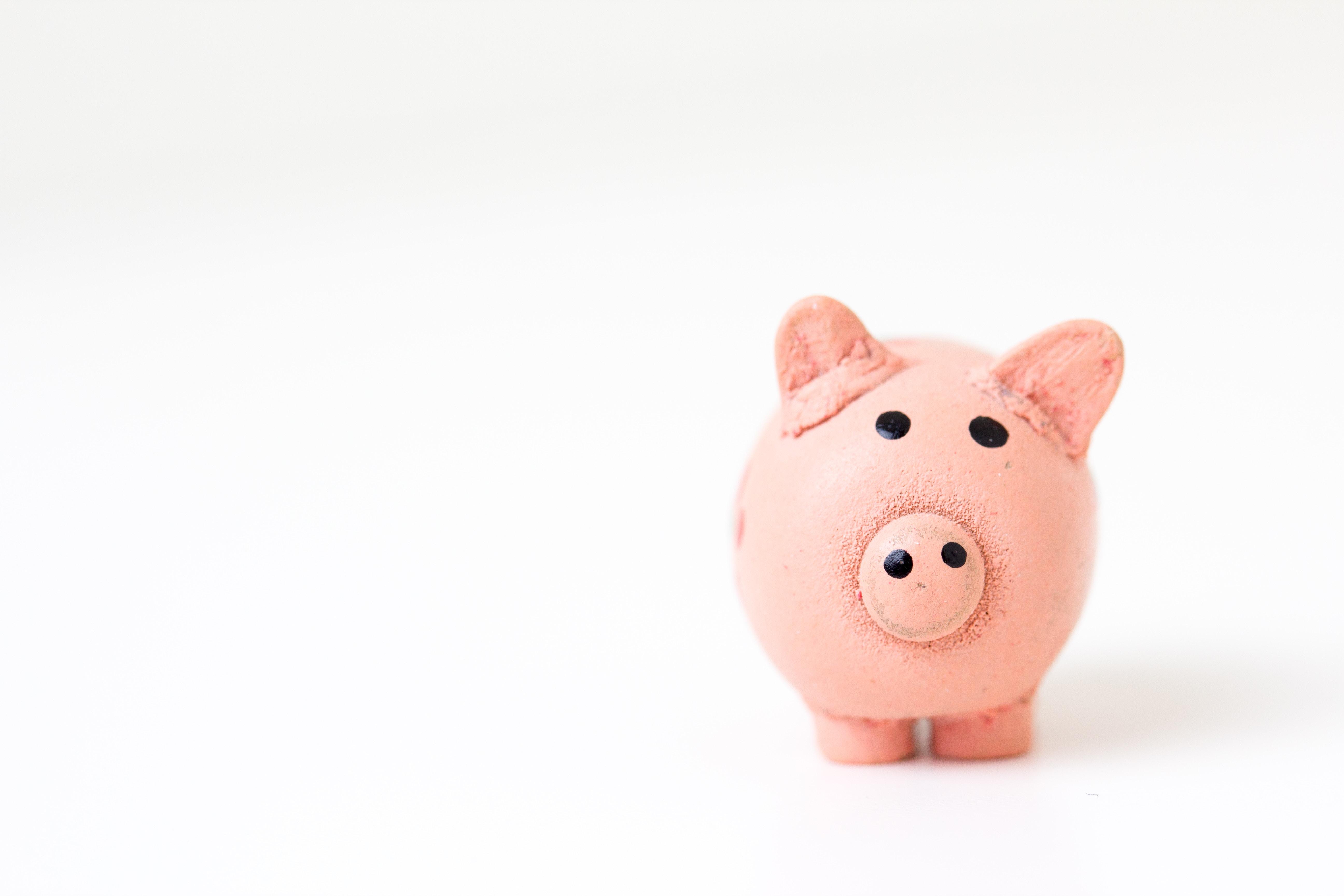 Quel investissement locatif choisir en fonction de votre budget ?
